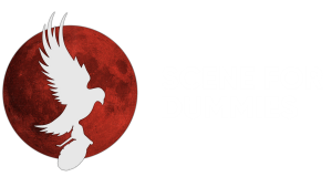 Scene for Dummies: Hollywood Undead